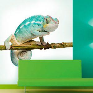 schilderbedrijf-groenendaal-behangen-4